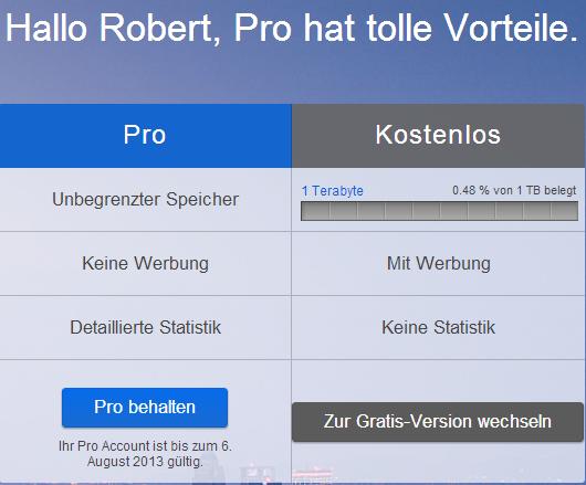 Flickr - Unterschiede zwischen Pro und kostenlosem Account.