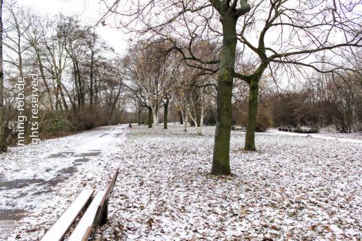 Beim Laufen im Winter kommt es vor allem auf die Kleidung an.